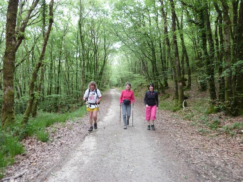Dernière randonnée de la saison Bois_b11