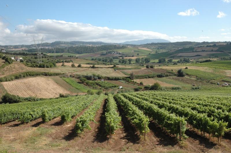 Portugal 2012 Dsc_8610