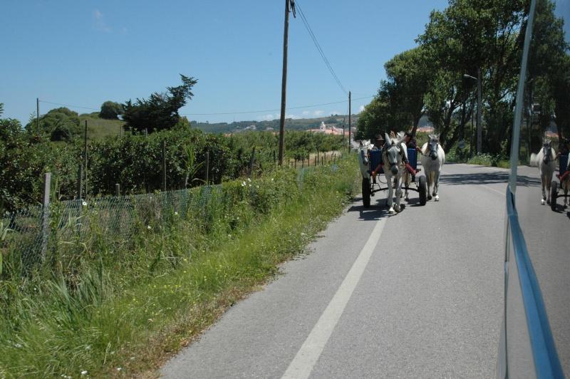 Portugal 2012 Dsc_8710