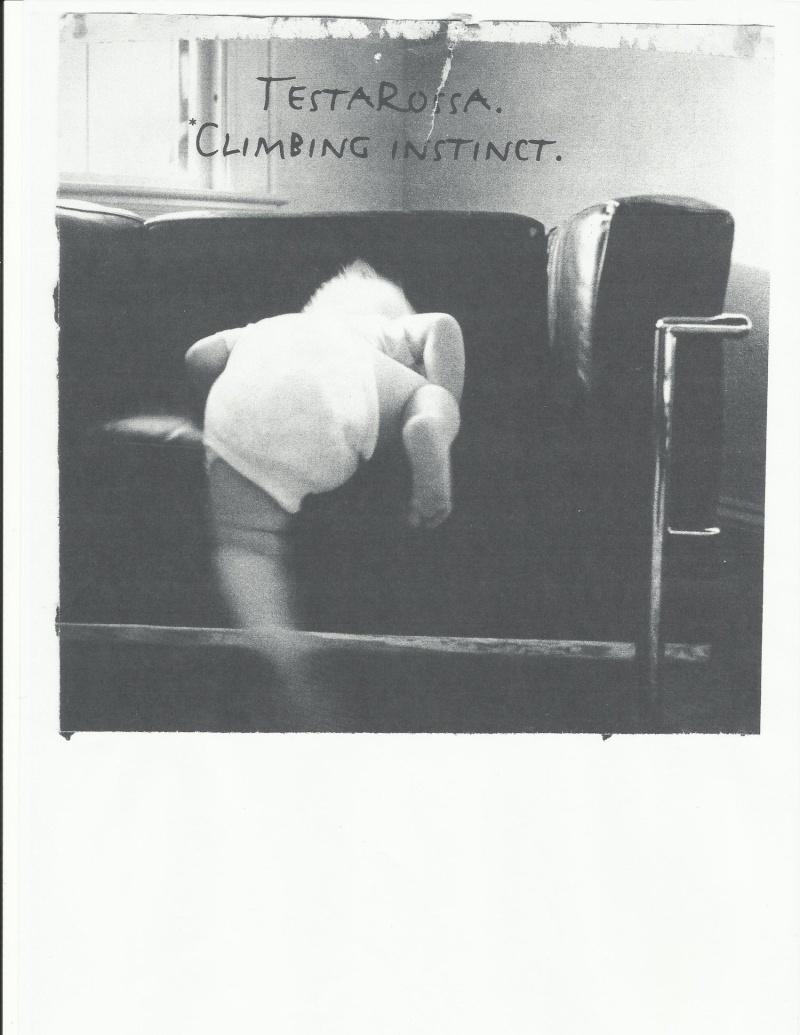 Poster testarossa Testar10