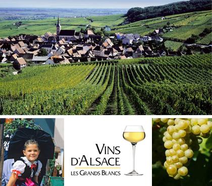 Balade en Alsace 6a010510