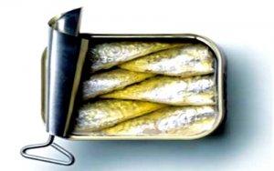 المغرب يحتكر 40 في المائة من الإنتاج العالمي لعلب سمك السردين المصبر  Arton214