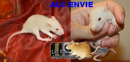 ALC Yeni Raki x IND Aquavit - 06/05/12 - Page 5 J17_en10