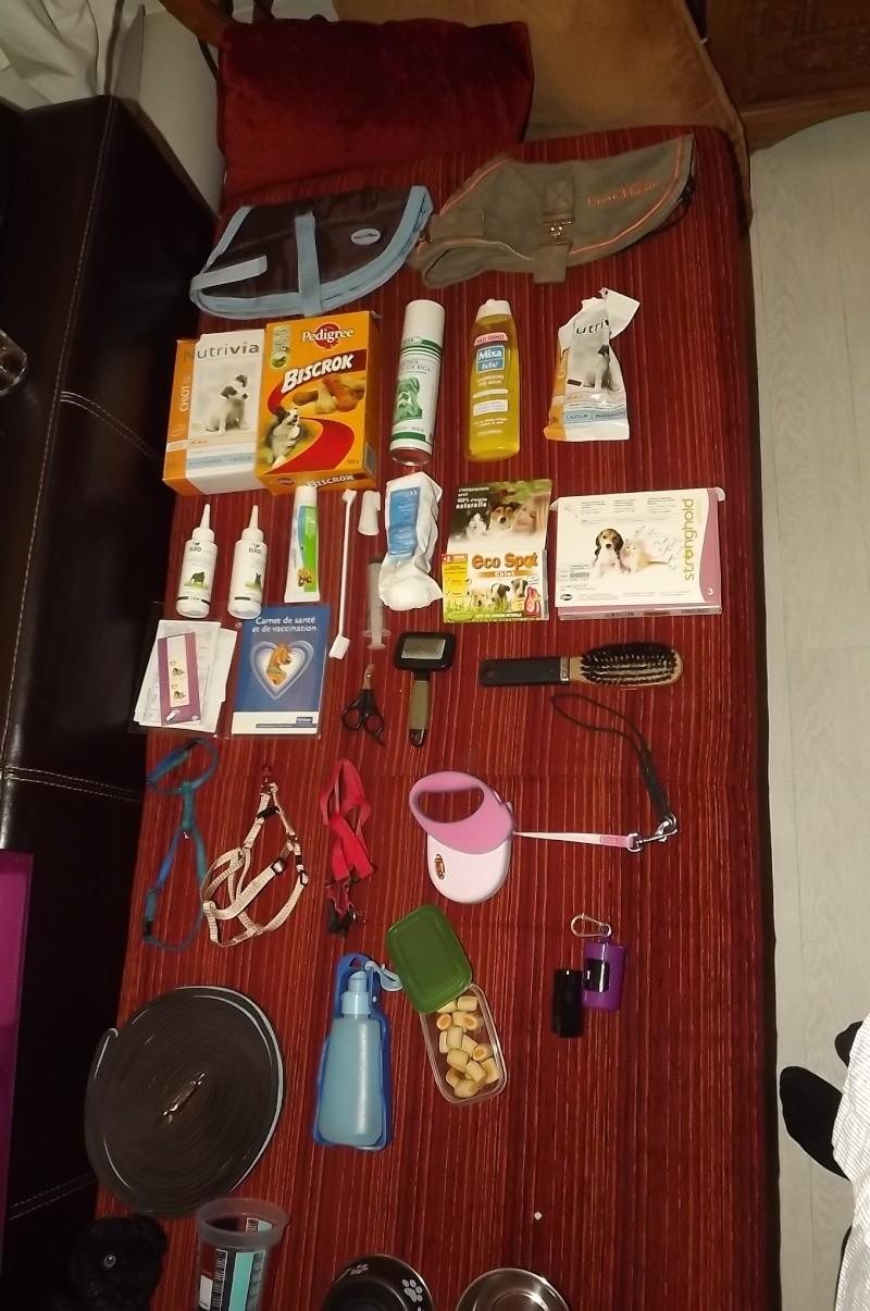 Accessoires - Les accessoires de vos animaux en particulier les chiens.  - Page 2 Dscf3513