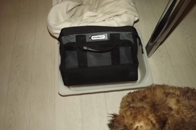 Les accessoires de vos animaux en particulier les chiens.  Dscf3515