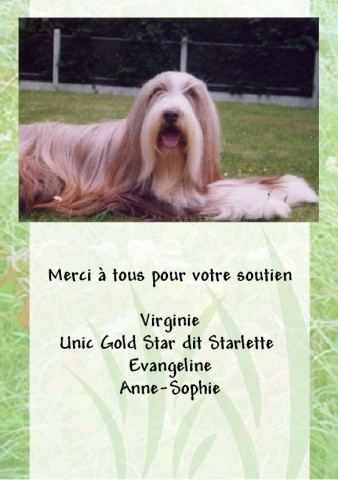 CH Nougatine des Côteaux de Baille-Vents 4 juin 1997- 3 décembre 2012 Carte110
