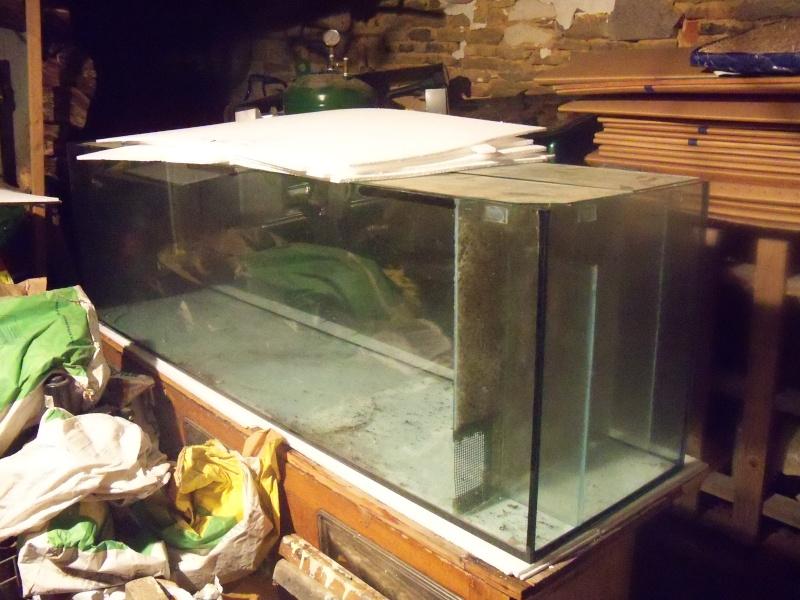 et de .... evolution d'un bac jusqu'a la fish room !! - Page 6 100_2614