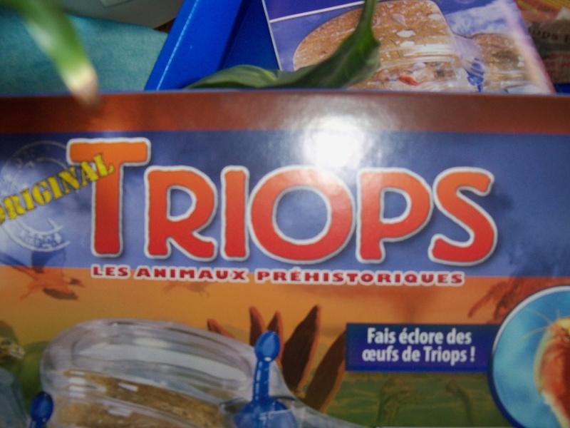 triops 100_3310