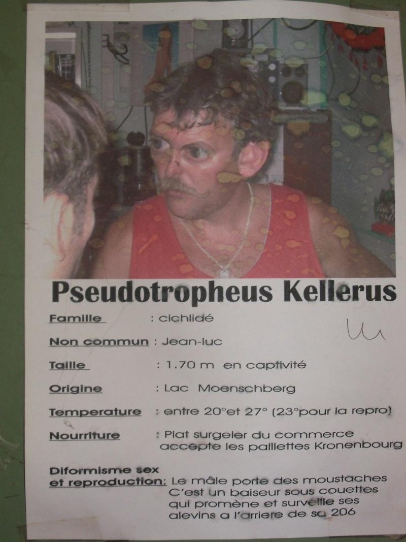 visite au club de  nos amis de  Mulhouse 100_3914