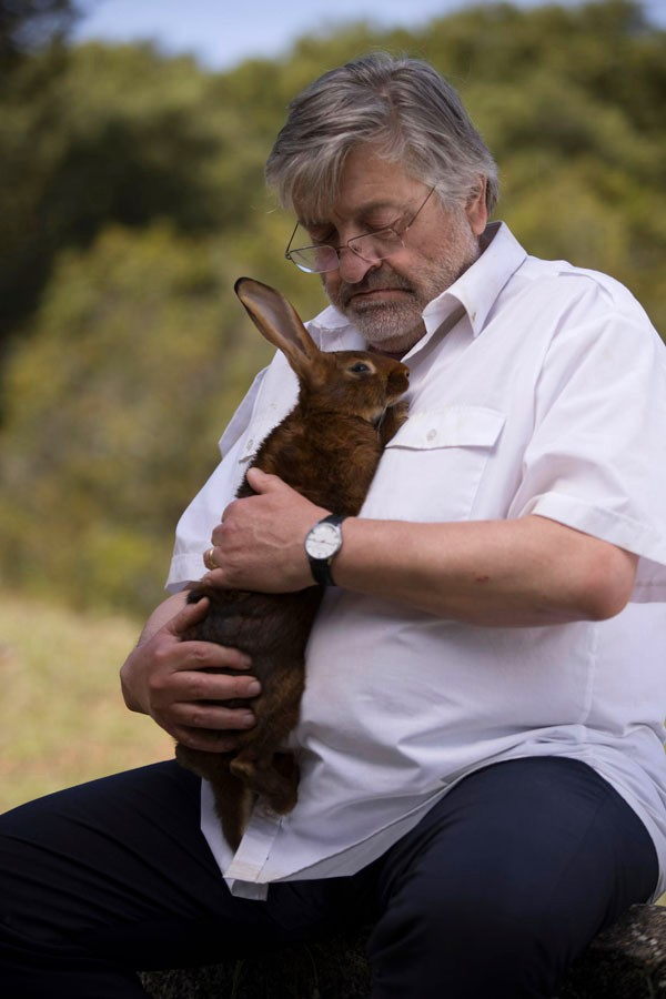 Les animaux dans PBLV - Page 5 Lapin10