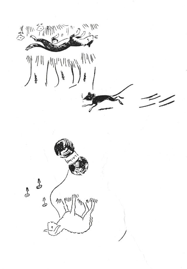Rêveries de Nuage ... d'un rivage ... - Page 8 3_tamp13