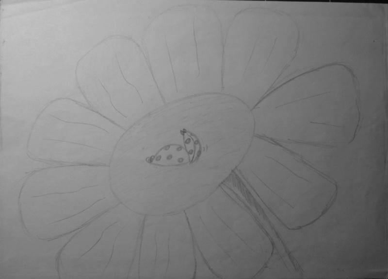 Mes dessins .... inachevés / Autres - Nuage - Page 11 Coccin10