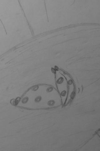 Mes dessins .... inachevés / Autres - Nuage - Page 11 Coccin12