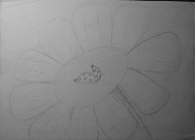 Mes dessins .... inachevés / Autres - Nuage - Page 11 Coccin13