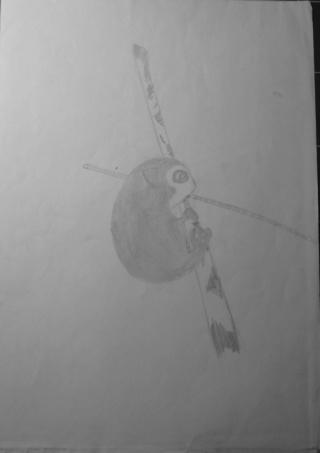 Mes dessins .... inachevés / Autres - Nuage - Page 11 Koala_11