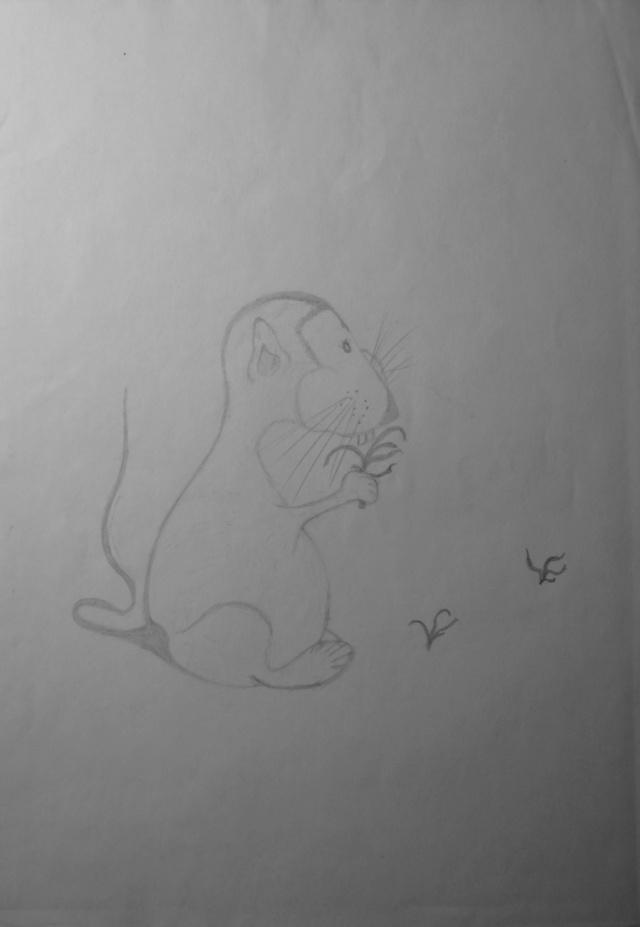 Mes dessins .... inachevés / Autres - Nuage - Page 11 Mulot_11