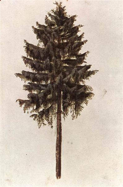 Cent ans et les poésies opportunes - Page 28 Pine-110