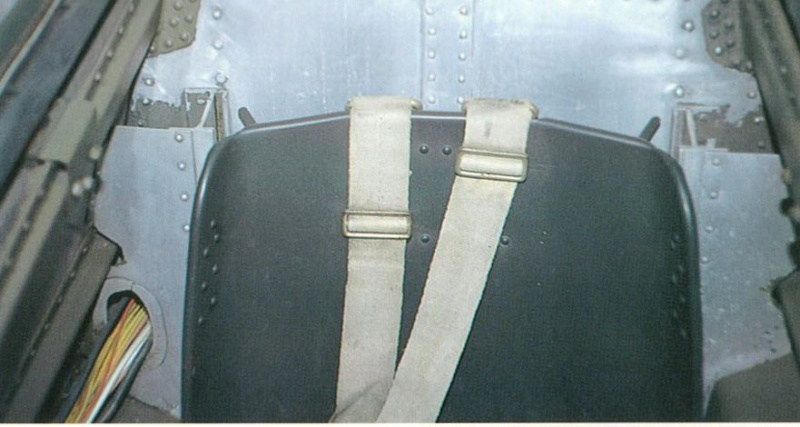 FW190 A8/R8 - 1/48 - Page 3 510