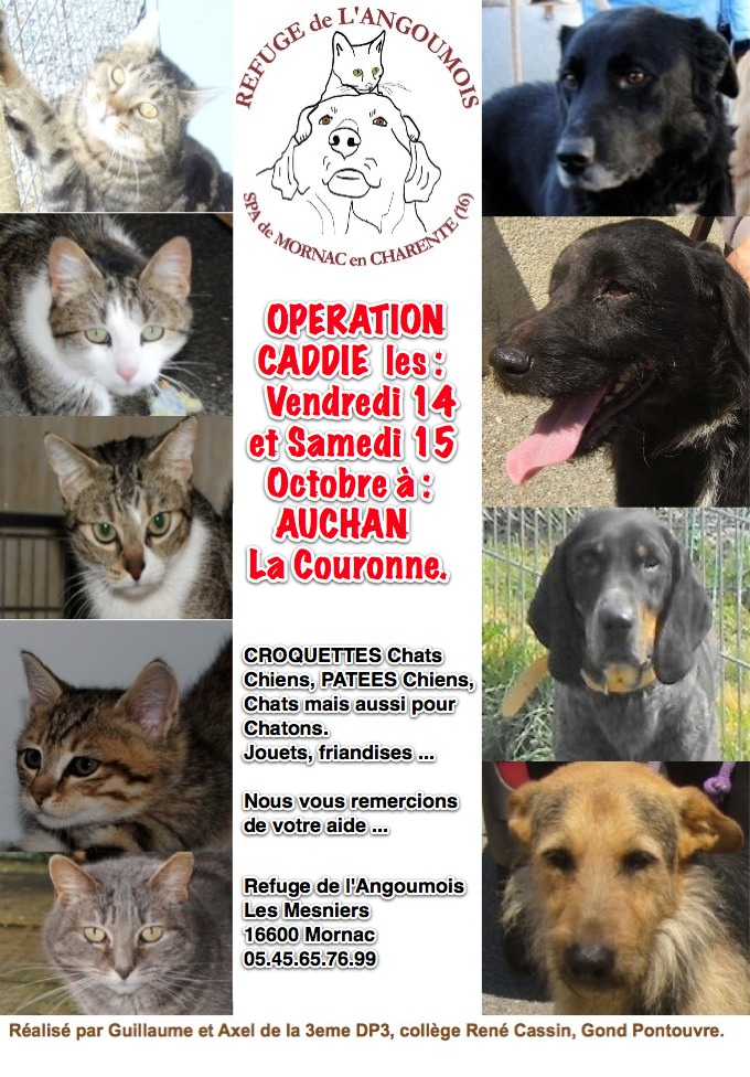OPERATION CADDIE les 14 et 15 Octobre  Affich10