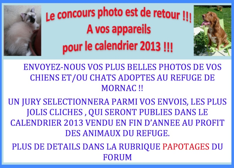 CONCOURS PHOTO CALENDRIER 2013 Affich11
