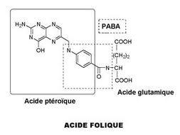 Des bonnes vitamines pour nos poissons Acide_10