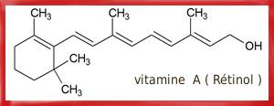 Des bonnes vitamines pour nos poissons Vitami12