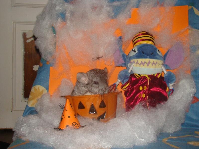 Concours Halloween jusqu'au 20 novembre Dsc01910