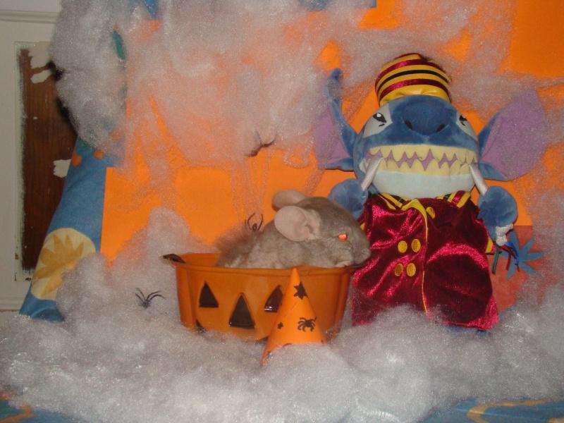 Concours Halloween jusqu'au 20 novembre Dsc01911