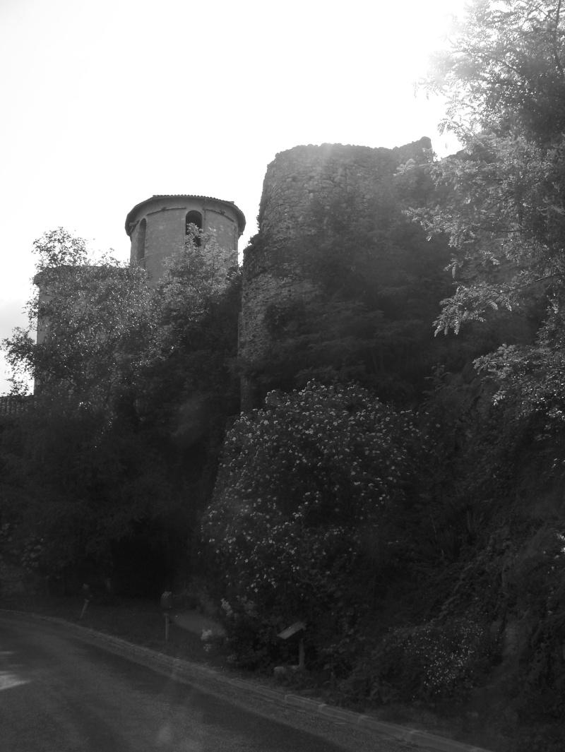 Visue région Toulousaine - Ariège le dimanche 27 mai 2012 - Page 14 100_6916