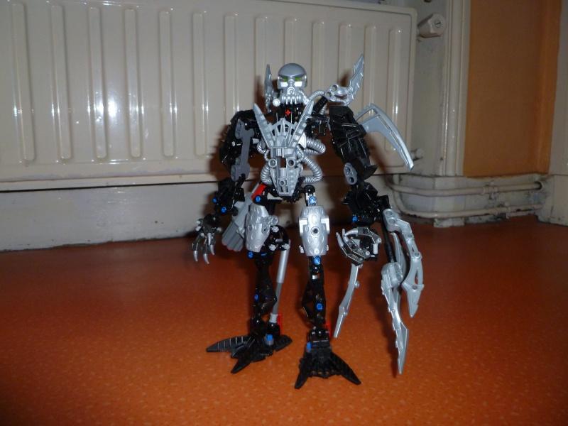 [Produits] Votre collection Bionicle - Page 14 P1010214