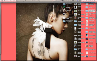 Show Your Desktop - Page 6 Screen10