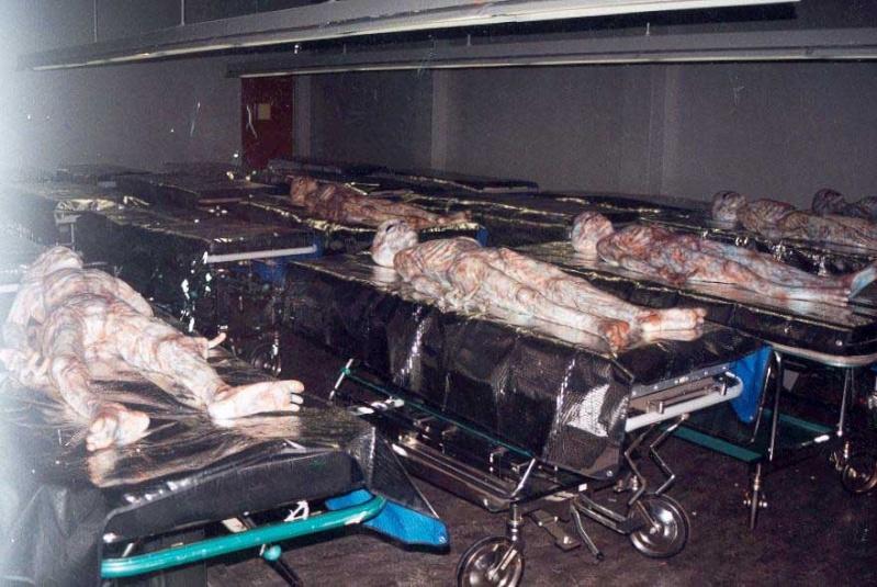 Desclasifican Fotos De 6 Cadáveres Alien Liiiii10