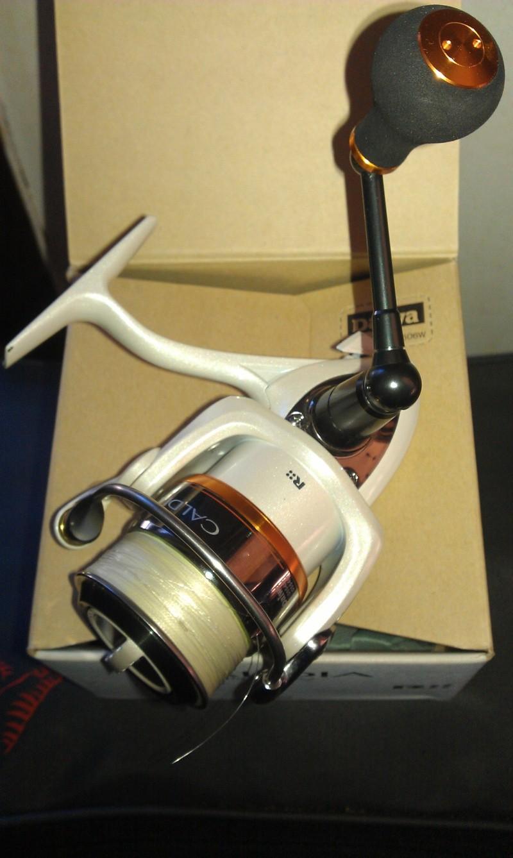 Vends Moulinets spinning Daiwa Caldia Custom 2004 et 2506W Imag0212