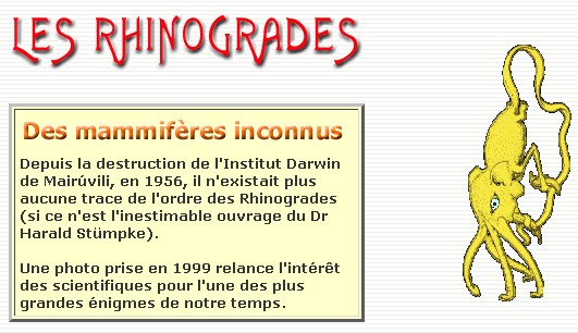 BANQUE DE FAUX SITES Rhinog10