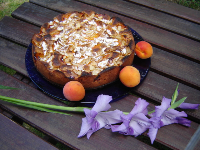 Tourte aux abricots et aux amandes 00312