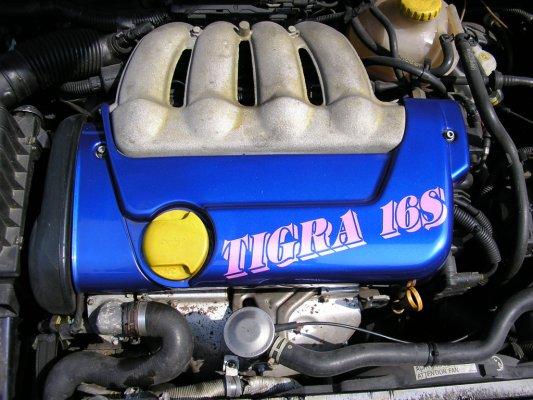 ma tigra d avant lol Tigra_11