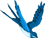 Les petits oiseaux l'hiver Hirond10