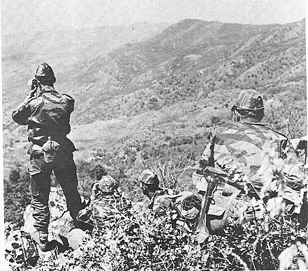 Nature morte : les commandos de chasse... Comman11