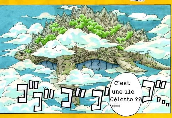 L'île de la tortue  96925-10