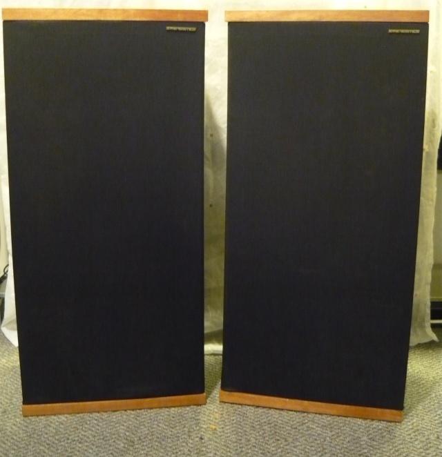 Synergistics Floorstand speaker (used) SOLD P1060920