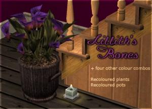Цветы для дома - Страница 3 Dkj116