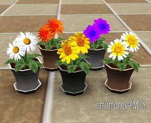 Цветы - Страница 2 Forum359