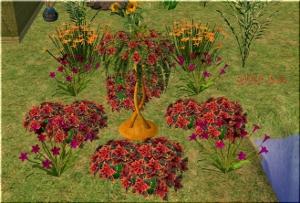 Цветы для дома - Страница 3 Krds98