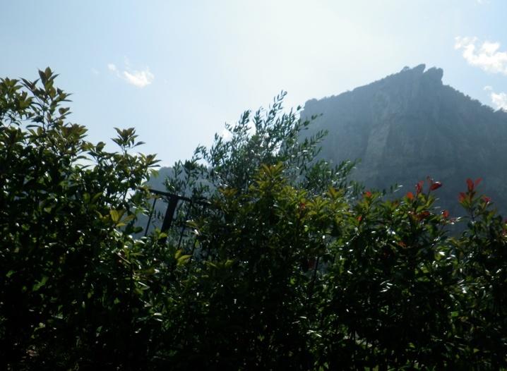 Tannheimer Tal - Gardasee - Tannheimer Tal Bildsc79