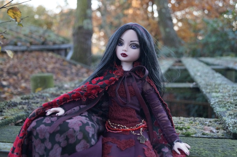 THEME DE NOVEMBRE 2012 : Le Noir , le gothique etc... Dsc00127