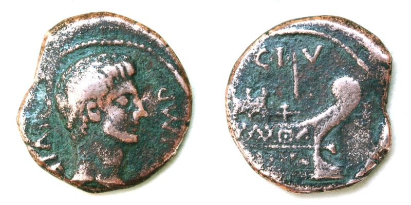 As et dupondius de Nîmes - Page 10 Dupond10