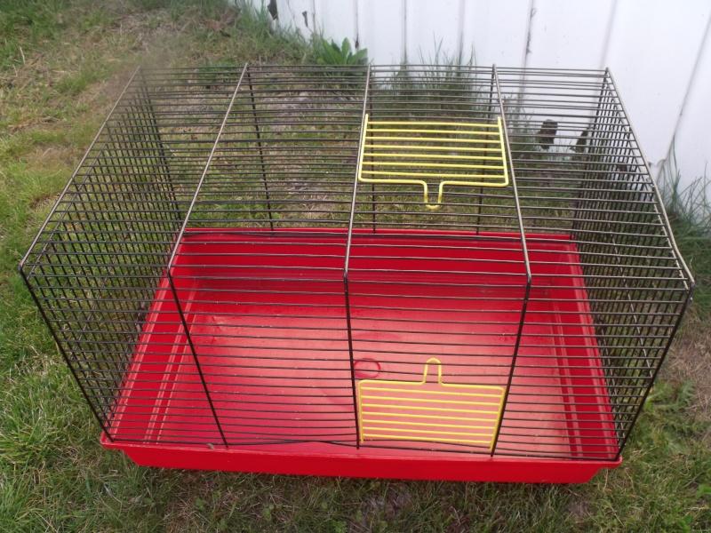 vente de cages et accessoires Dscf9611