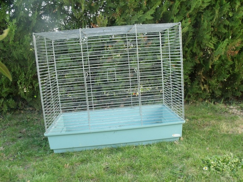 vente de cages et accessoires Dscf9612
