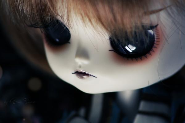 (Pul'/Dal/Byul/Tae') L.Crow's family - MAJ + News p.1 Img_5011
