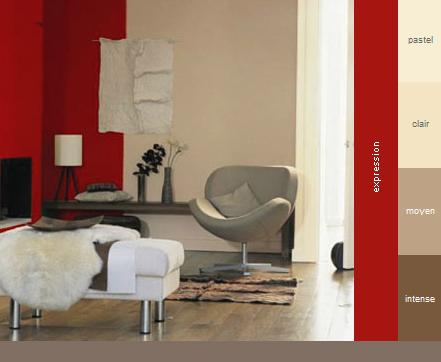 couleurs pour le salon 0210